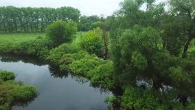 Flight over the Seim River, Ukraine surrounded by trees - aerial videotaping. Flight over the Seim River Ukraine, surrounded by trees - aerial survey stock footage