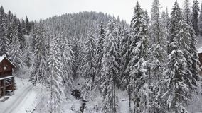 Flight over snowy mountain coniferous forest. Overcast frosty weather stock video footage