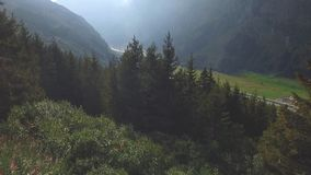 A flight over some trees in a valley stock video
