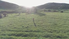 Flight over sport man at perfect green grass meadow. Sunset in mountain. Flat color. UHD 4K aerial view. Low altitude flight over sport man at perfect green stock video footage