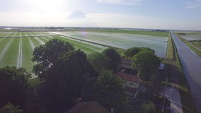 Flight over the water of the Italian rice fields stock footage