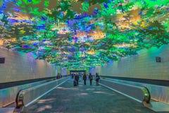Flight Paths Artwork Hartsfield International Airport. `Flight Paths` art project by artist Steve Waldeck along a 450 foot long underground walkway between Stock Photos