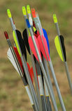 Flight Pattern. Nock ends of a stack of archery arrows royalty free stock image