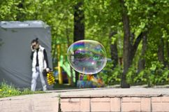 Flight of soap bubble in the park. They are up in the air Royalty Free Stock Photos