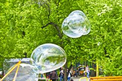Flight of soap bubbles in the park. They are up in the air stock photo