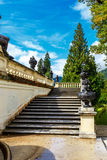 Flight of stone stairs with ornamental garden urns. Flight of outdoor stone stairs with ornamental garden urns and balustrade leading up to a tall evergreen Stock Images