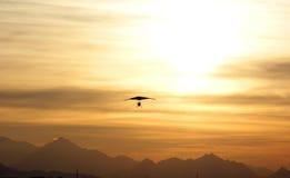 Flight on sunset Stock Photos