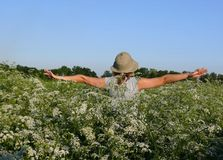 Flight on white flowers meadow. Happy and youth Royalty Free Stock Image