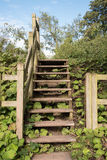 Flight of Wooden Steps Royalty Free Stock Images