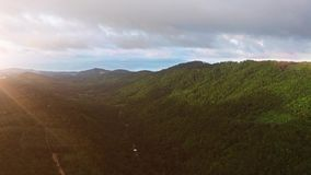 Flights above jungle in Thailand on Samui island. Aerial view on road in forest. Sunset. Sun light stock video footage