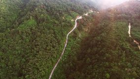 Flights above jungle in Thailand on Samui island stock video footage