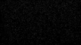 Flimrande partiklar, slumpm?ssig r?relse av partiklar P? h?rlig avslappnande bakgrund Bl?nka partiklar med Bokeh lager videofilmer