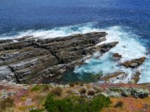 Flinders Chase national park. Succulent plants on the rocks of Flinders Chase on Kangaroo island and the breakers of the Southern Ocean in Australia Stock Image
