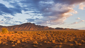 Flinders Ranges. Mountains in the evening, sunset royalty free stock photography