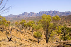 Flinders Ranges. A shot of the flinders ranges in the desert areas of South australia royalty free stock photo