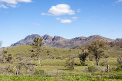 Flinders ranges australia Stock Images