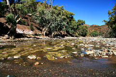 Flinders Ranges. A creek in Flinders Ranges National Park, near Wilpena Pound stock photos