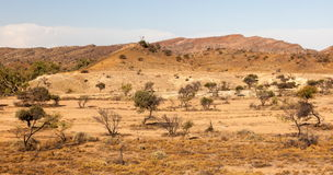 Flinders Ranges landscape. South Australia. Stock Image