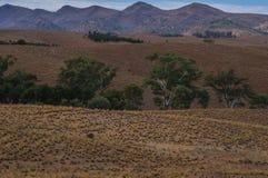 Flinders Ranges 001 Stock Photos