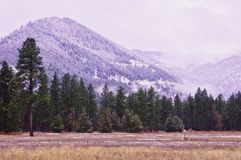 Flint Range, Montana foto de stock