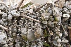 Flintstones выровнянные вверх на веревочках Стоковая Фотография