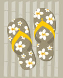 Flip-Flop Royalty Free Stock Photos
