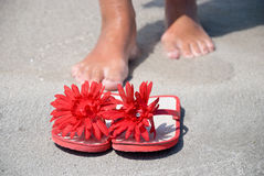 Flip-flop Stock Photo
