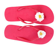 Flip flop Royalty Free Stock Photo