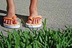 Flip flop grass royalty free stock photo