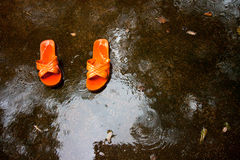 Flip-flop in rain Stock Image