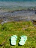 Flip flop sandals Stock Image