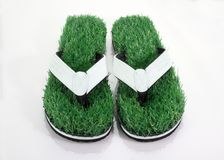 Flip-Flop Slipper with Green Grass Comfort Concept Stock Photo