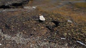 Flip Flop sul litorale video d archivio