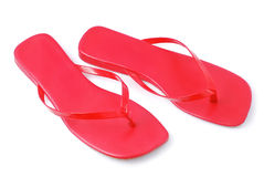 Flip flops. On white background royalty free stock images