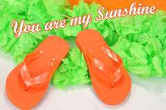 Flip Flops. This photo shows a pair of bright orange flip flops with a bright green background saying you are my sunshine stock image