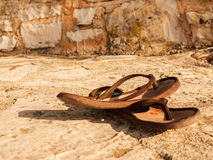 Flip Flops Immagini Stock Libere da Diritti