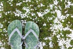 Flip-flops após a chuva de granizo Fotografia de Stock