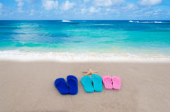 Flip flops on the beach. Starfish and color flip flops on the sandy beach by the ocean royalty free stock photos