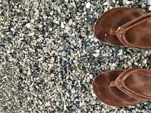 Flip flops on the beach. Brown flip flops on the shells of the beach royalty free stock image