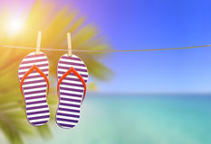 Flip flops on the clothesline Stock Photography