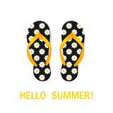 Flip-flops com teste padrão Fundo do verão ilustração do vetor