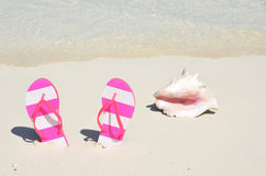 Flip-flops and a conch Stock Photography