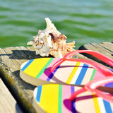 Flip-flops and conch on a wooden pier Royalty Free Stock Photo