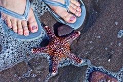 Flip-flops e a estrela do mar Fotografia de Stock
