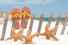 Flip flops on fence. Flip flops hanging on fence by starfish royalty free stock photo