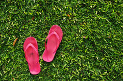 Flip flops on grass field. A pair of flip flops are left on field of a relaxed day Stock Images