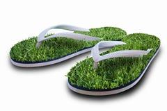 Flip flops with green grass. A closeup of flip flops or beach sandals with green grass Stock Image