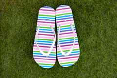 Flip-flops on the green grass royalty free stock photos
