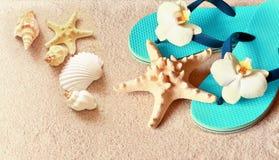 Flip Flops im Sand mit Starfish sommerzeit Seeshell mit Ozean auf Hintergrund lizenzfreie stockbilder