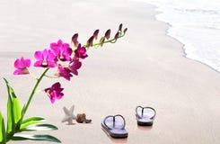 Flip Flops na praia na areia com shell e flowe da orquídea Fotos de Stock Royalty Free